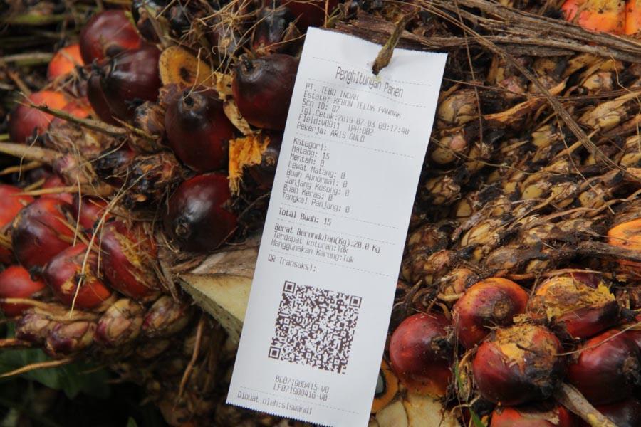 Kelapa Sawit Semakin Berkelanjutan dengan Revolusi Industri 4.0